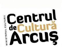 3a. Centrul Arcus