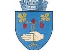 6. Primaria Medias logo